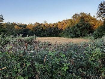 terrain à Neuillay-les-Bois (36)