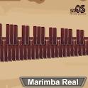 Marimba, Xylophone, Vibraphone Real icon
