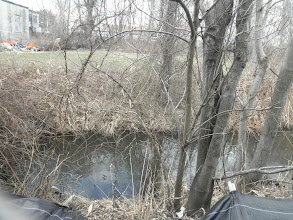 Photo: Town Brook between Center St and 'Penn St' (ie Lowes Pkg Lot)