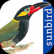 App Icon for All Birds Guianas, Suriname, Guyana, French Guiana App in Czech Republic Google Play Store