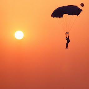 Easy Glider by Tom Vogt - Sports & Fitness Other Sports ( orange, skydiver, sunset, glide, , color, colors, landscape, portrait, object, filter forge )