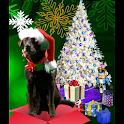 THE SANTA DOG NEW YEARS APP icon