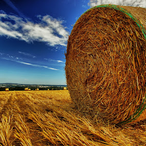 View! by Olaf Pohling - Instagram & Mobile Other ( field, autumn, straw, blue heaven, summer, view )