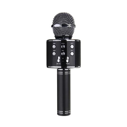 Mic-Karaoke-WSTER-WS-858-2.jpg