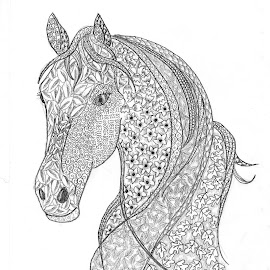 Mindful Horse by Ingrid Anderson-Riley - Drawing All Drawing