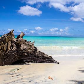 Endless blues by Chandrasekhar Yanamandra - Nature Up Close Sand ( coastline, ocean, island, beach, bay )