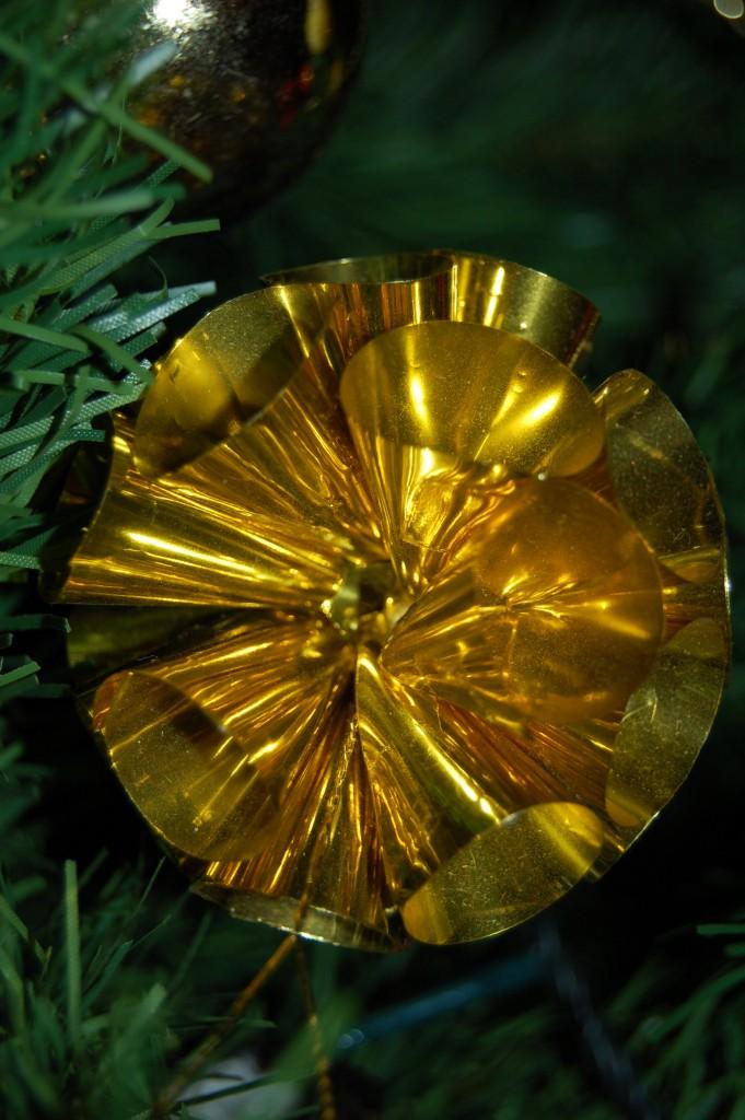 Coni d'oro di MIMMI