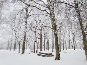 Photo: Bench and trees under snow at Eastwood Park in Dayton, Ohio.