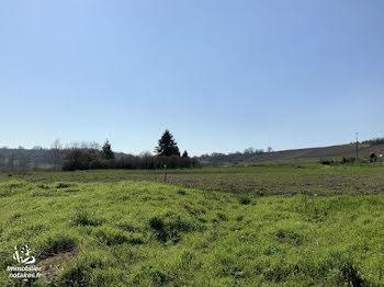 terrain à batir à Courville (51)