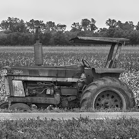 Old Tractor B&W by Grady  Welch - Black & White Objects & Still Life ( b&w, white, old, tractoer, black, cotton, black and white )