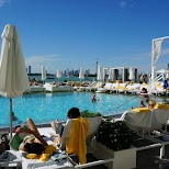 most beautiful pool in Miami: Mondrian Hotel in Miami, Florida, United States