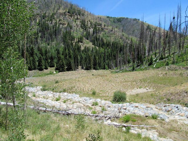 Debris basins at the mouth of Mill Canyon