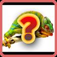 Animals Quiz icon