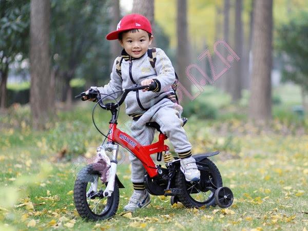 Xe đạp trẻ em ROYAL BABY B-9 3