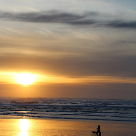 Walking the Dog at Sunset by Terese Hale - Landscapes Beaches ( sunset, silhouettes, ocean, beach, evening,  )