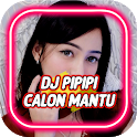 DJ PIPIPI CALON MANTU REMIX VIRAL icon