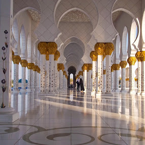 Sheikh Zayed Mosque, Abudhabi by Manoj Kumar Kd - Buildings & Architecture Places of Worship