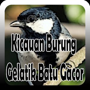 Kicauan Burung Gelatik Batu Gacor Created By Takumidev Similar Apps Like Kicauan Burung Gelatik Batu Gacor Gametwo Com