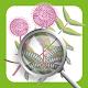 Invasive Species ID Guide (app)