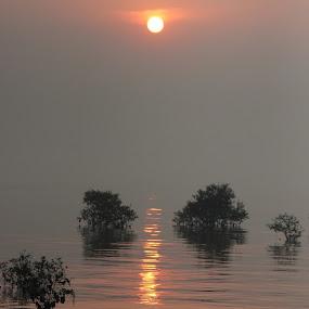SUNRISE @ SEWRI by Yash Savla - Landscapes Sunsets & Sunrises ( mumbai, sunset, sunrise, sewri, sun )