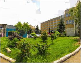 Photo: Turda - Str. Andrei Mureşanu, spatiu verde -   - 2019.06.10