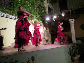 Photo: We saw a Flamenco show that was outstanding.