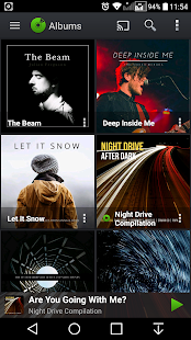 PlayerPro Music Player Screenshot