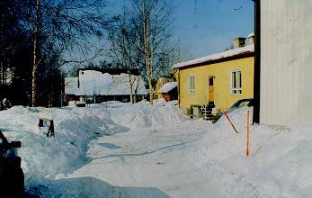 Photo: 1980 Sopukatu 17, kotipiha (3)