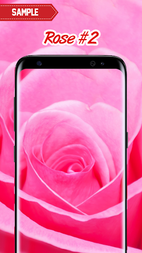 Rose Wallpaper  screenshots 11