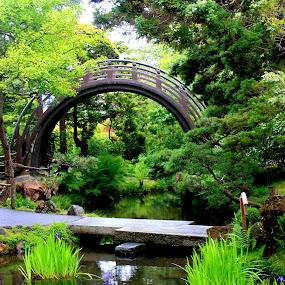 The Bridge by Amory Godwin Grijaldo - Buildings & Architecture Bridges & Suspended Structures