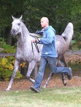 Photo: BA010142 Janow Podlaski - stadnina koni