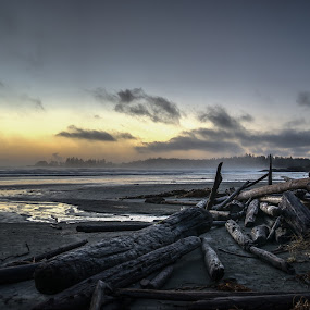 Winter weather on the West Coast by GThomas Muir - Landscapes Waterscapes ( tofino, ucluelet, sunset, winter, west coast )