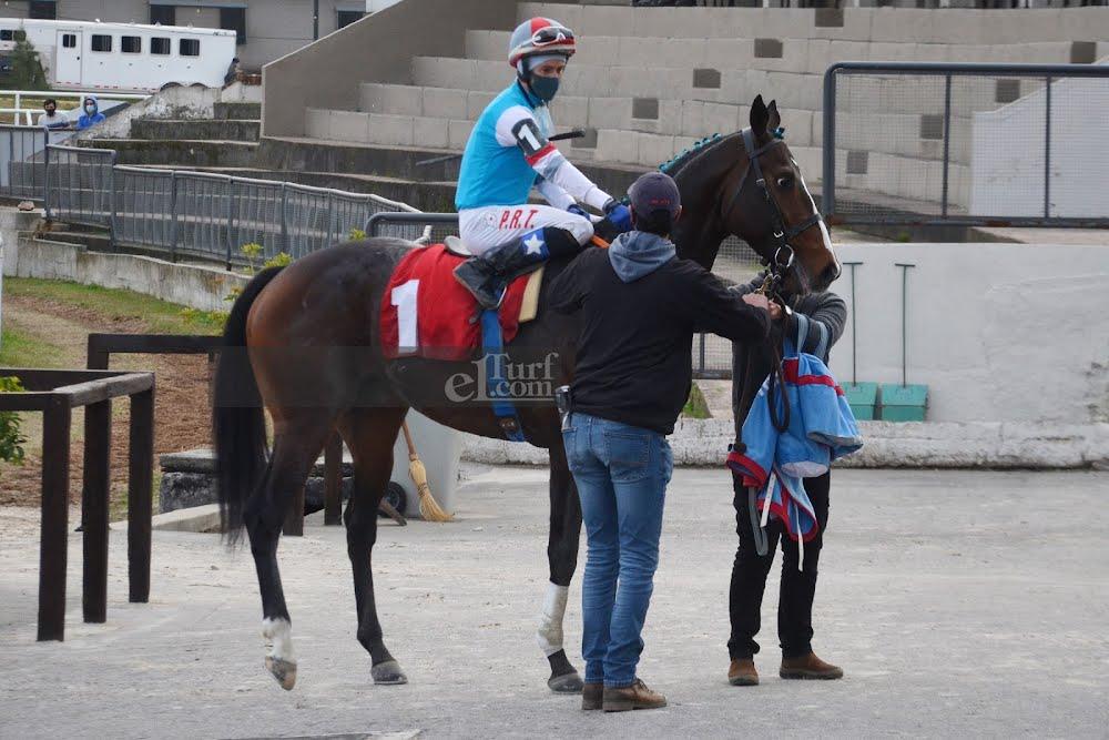Brianzo (Roman Ruler) gana Handicap (1200m-Arena-LPI).