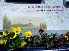 """Photo: """"Bizalom"""" Biblia, SZIT 1996"""