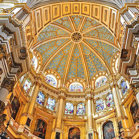 Cathedral Granada, Spain by Vinay Tyagi - Buildings & Architecture Public & Historical