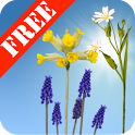 Spring Meadow Free icon
