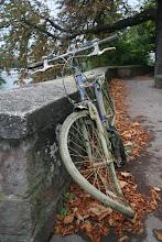 Photo: abandoned bike