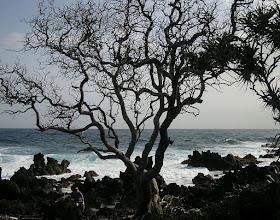 Photo: C1250072 Maui - wulkaniczne wybrzeze