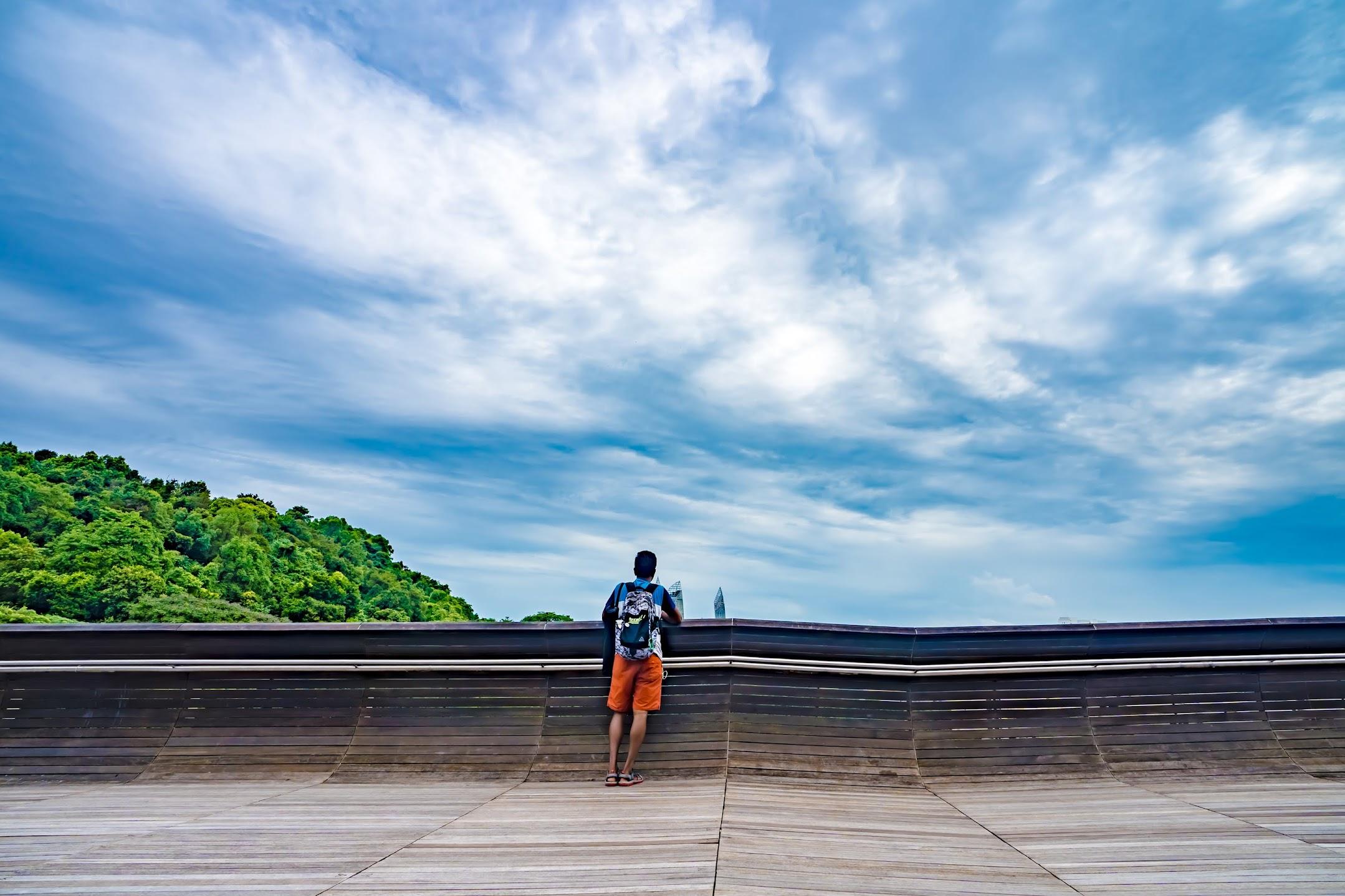 シンガポール ヘンダーソン・ウェーブ3