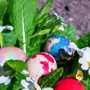 6679-Colorful_Easter_eggs.jpg