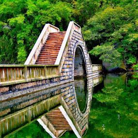 Bridge by Jaguar Ricko - Landscapes Waterscapes ( photo )