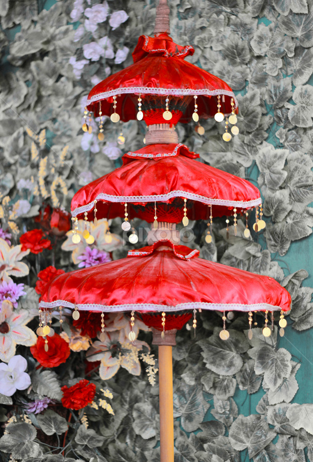 Umbrella by Egan Phedra - Artistic Objects Other Objects