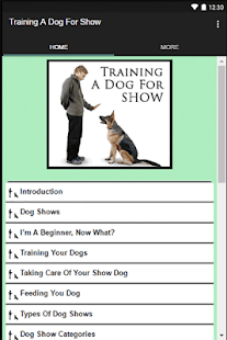 Training A Dog For Show - náhled