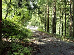 林道入口の様子
