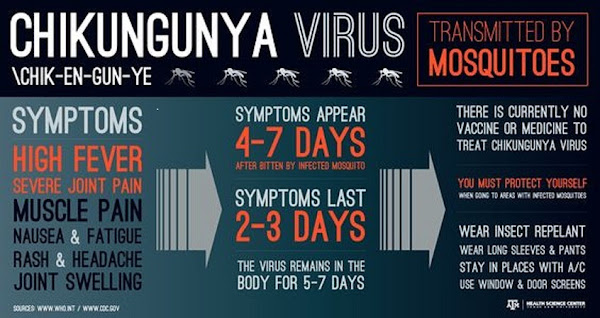 Darira Clinic- Physician |Dengue |Malaria Thyroid |Weight