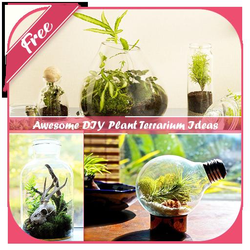 App Insights Awesome Diy Plant Terrarium Ideas Apptopia