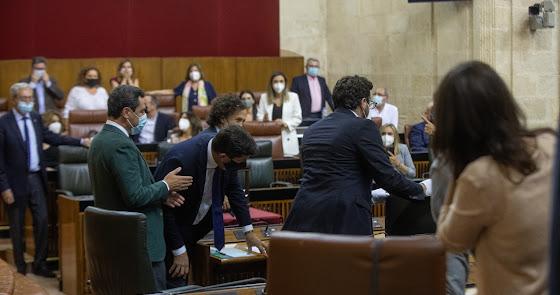 Revuelo en el Parlamento de Andalucía por la presencia de una rata