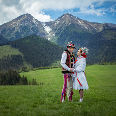 Wedding photographer Martin Krystynek (martinkrystynek). Photo of 02.06.2016
