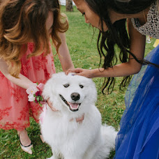 Wedding photographer Ilya Mikhaylov (dahmer). Photo of 14.11.2017