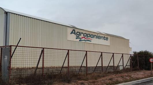 El centro logístico de Grupo Agroponiente en Ruescas vuelve a crecer